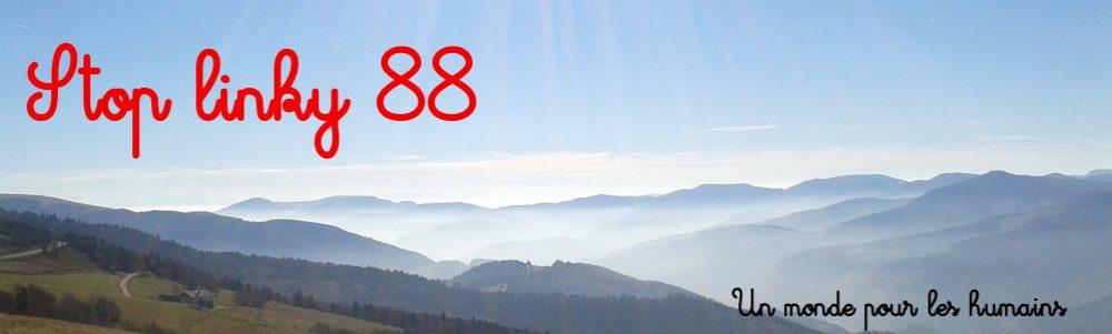 Stoplinky88